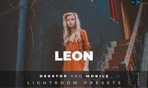 Leon Desktop and Mobile Lightroom Preset