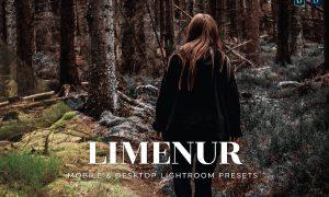 Limenur Mobile and Desktop Lightroom Presets