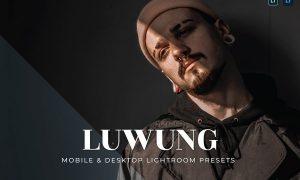 Luwung Mobile and Desktop Lightroom Presets