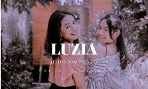 Luzia Lightroom Presets Dekstop and Mobile