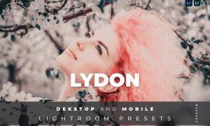 Lydon Desktop and Mobile Lightroom Preset