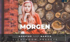 Morgen Desktop and Mobile Lightroom Preset