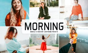 Morning Mobile & Desktop Lightroom Presets