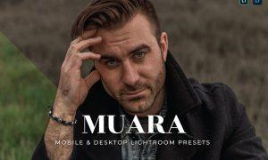 Muara Mobile and Desktop Lightroom Presets