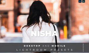 Nisha Desktop and Mobile Lightroom Preset