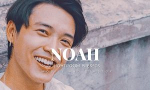 Noah Lightroom Presets Dekstop and Mobile