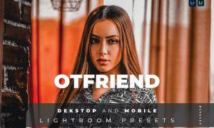 Otfriend Desktop and Mobile Lightroom Preset