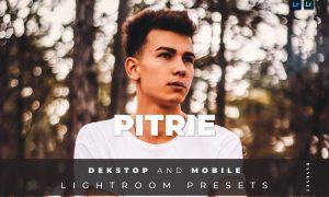 Pitrie Desktop and Mobile Lightroom Preset