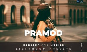 Pramod Desktop and Mobile Lightroom Preset