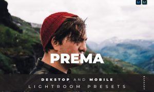 Prema Desktop and Mobile Lightroom Preset