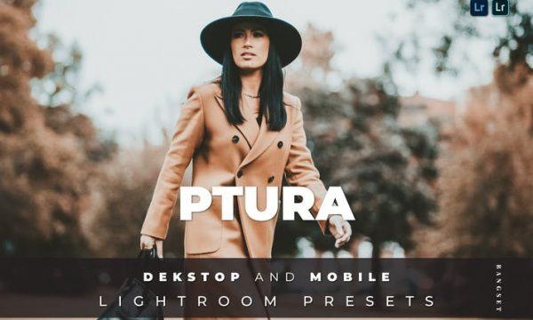 Ptura Desktop and Mobile Lightroom Preset