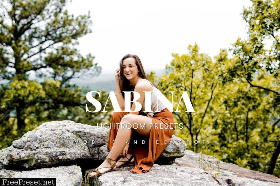 Sabina Lightroom Presets Dekstop and Mobile