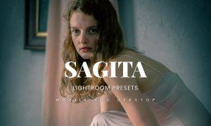 Sagita Lightroom Presets Dekstop and Mobile