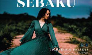 Sebaku Mobile and Desktop Lightroom Presets