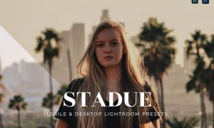 Stadue Mobile and Desktop Lightroom Presets