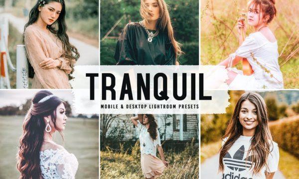 Tranquil Mobile & Desktop Lightroom Presets