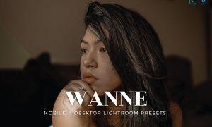 Wanne Mobile and Desktop Lightroom Presets