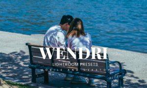 Wendri Lightroom Presets Dekstop and Mobile