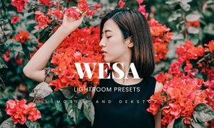 Wesa Lightroom Presets Dekstop and Mobile