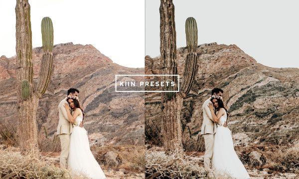 10 BOHO WEDDING LIGHTROOM PRESETS 6343230