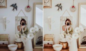 10 Natural Clean Lightroom Preset 6296390