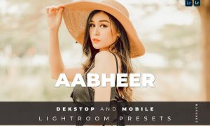 Aabheer Desktop and Mobile Lightroom Preset