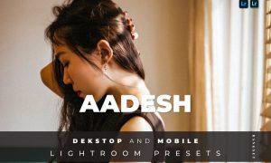 Aadesh Desktop and Mobile Lightroom Preset