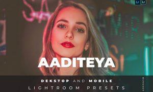 Aaditeya Desktop and Mobile Lightroom Preset