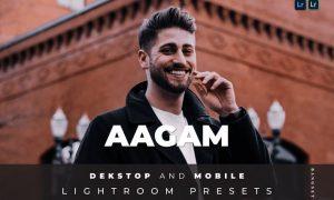 Aagam Desktop and Mobile Lightroom Preset