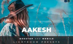 Aakesh Desktop and Mobile Lightroom Preset