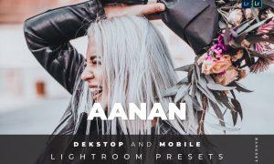 Aanan Desktop and Mobile Lightroom Preset