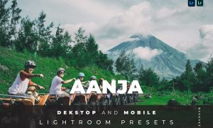 Aanja Desktop and Mobile Lightroom Preset