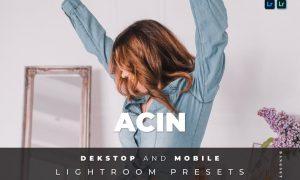 Acin Desktop and Mobile Lightroom Preset