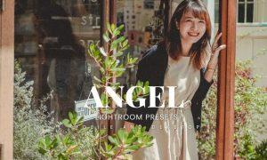 Angel Lightroom Presets Dekstop and Mobile