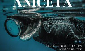 Aniceta Mobile and Desktop Lightroom Presets