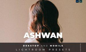 Ashwan Desktop and Mobile Lightroom Preset