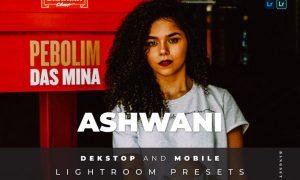 Ashwani Desktop and Mobile Lightroom Preset