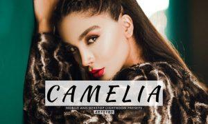 Camelia Lightroom Presets Dekstop and Mobile