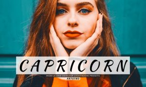 Capricorn Lightroom Presets Dekstop and Mobile