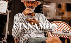Cinnamon Lightroom Presets Dekstop and Mobile