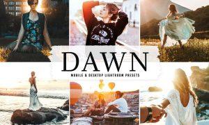 Dawn Mobile & Desktop Lightroom Presets