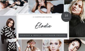 Lightroom Presets - Elodie