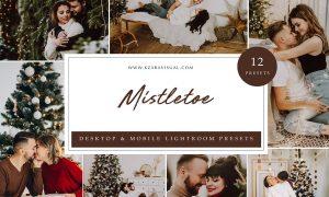 Lightroom Presets - Mistletoe