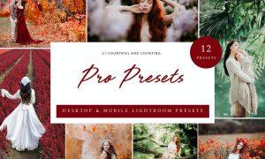 Lightroom Presets - Pro Presets