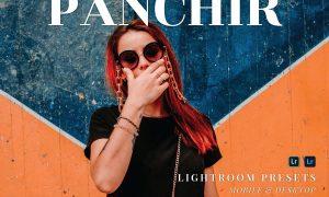 Panchir Mobile and Desktop Lightroom Presets