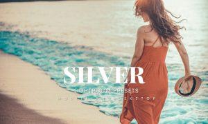 Silver Lightroom Presets Dekstop and Mobile