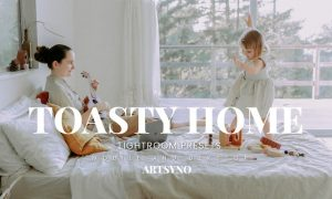 Toasty Home Lightroom Presets Dekstop and Mobile