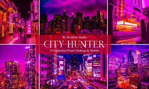 15 City Hunter Lightroom Presets