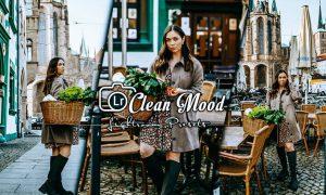 Clean Mood Lightroom Presets