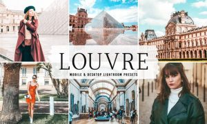 Louvre Mobile & Desktop Lightroom Presets